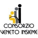 Logo: Consorzio Veneto Insieme